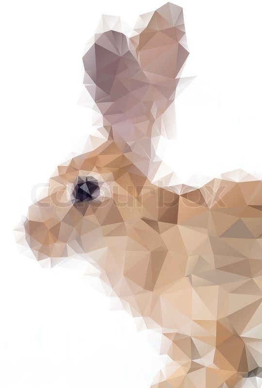 Rabbit Abstract Origami Style Vector Illustration