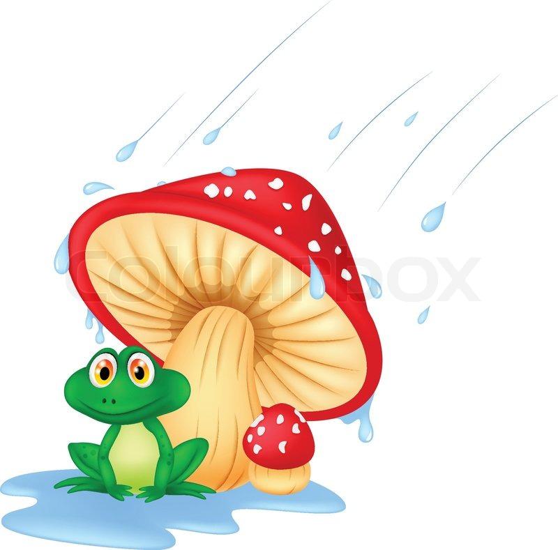 vector illustration of mushroom with a toad cartoon stock vector colourbox Frog Illustration Green Frog