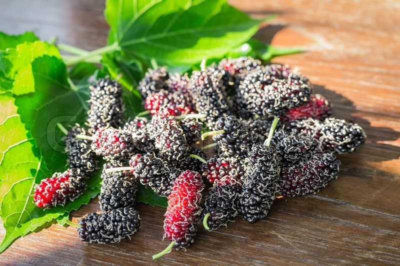 Stock image of 'heap of mulberry fruit and leaf on wooden table'
