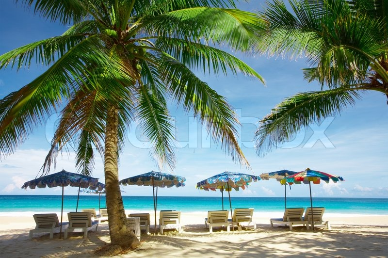 Stock image of 'view of nice exotic tropic beach early in the morning'