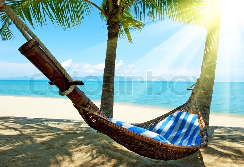 Stock image of 'Empty hammock between palms trees at sandy beach'