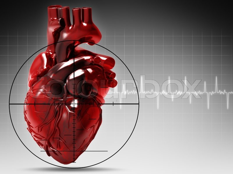 The human heart and its rhythmic problems