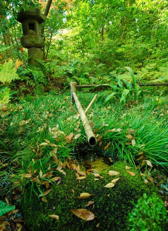 Bambus Brunnen Im Japanischen Garten Stockfoto Colourbox