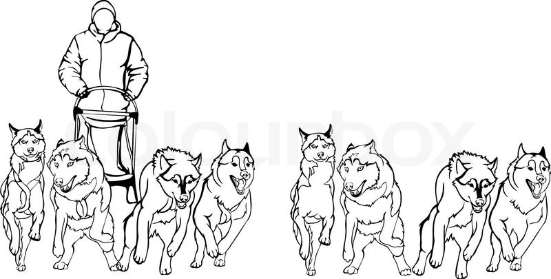 Dog Sled Team Coloring Page Coloring