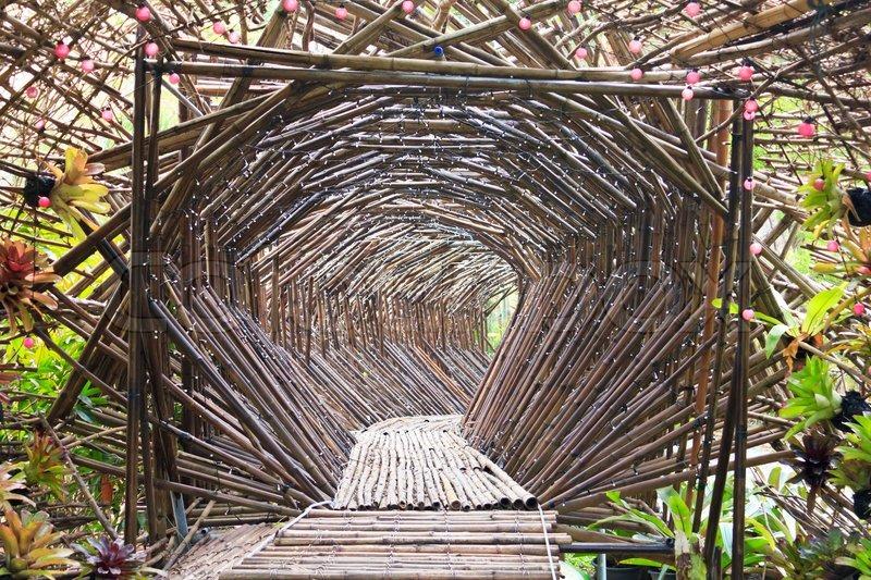 Walk In Garden Box: The Bamboo Tunnel In The Garden. ...