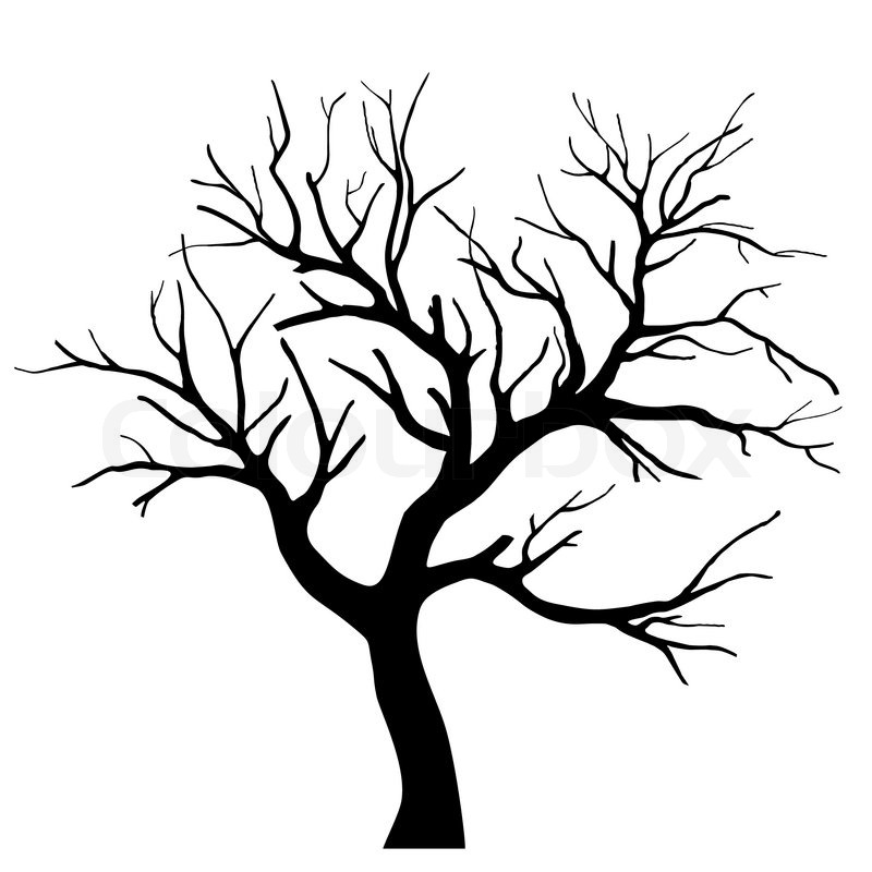 Tree silhouette | Stock vector | Colourbox