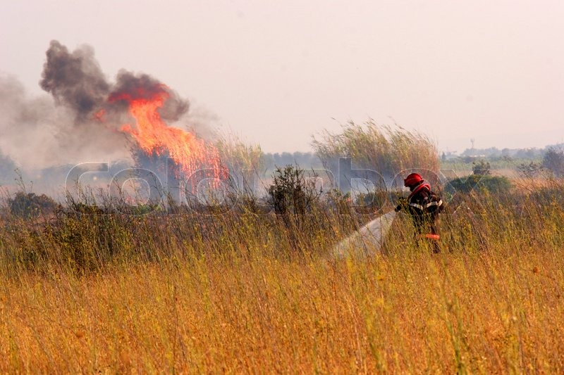Stock image of 'fire in the bush, a firer fighter use his fire hose against blaze'