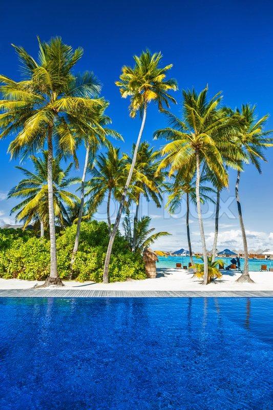 Blue paradise exotic resort
