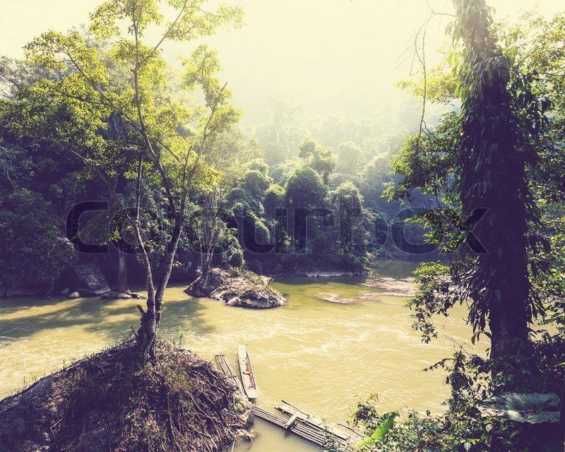 serenity river in vietnamese jungle stock photo colourbox