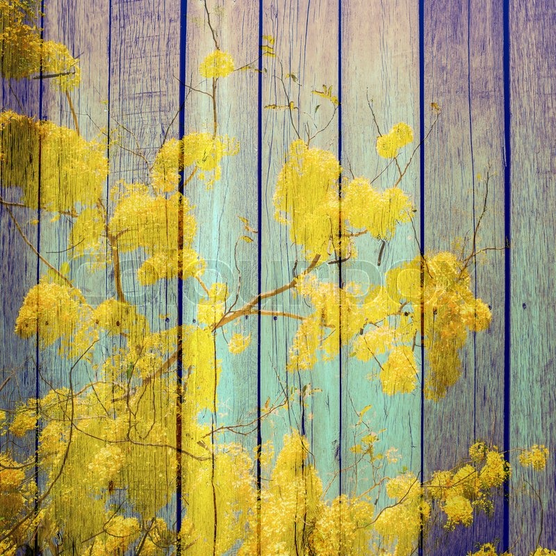 Abstract yellow Flowers wrap on wooden background, abstract art background,flower art background, stock photo