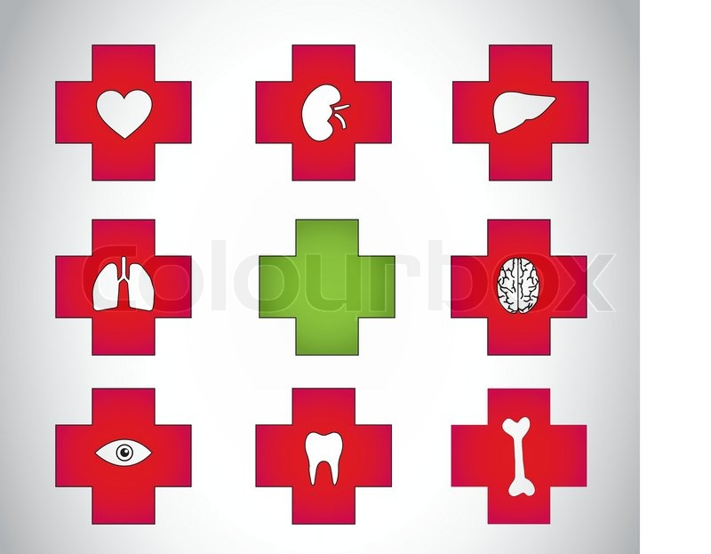 Red Medical Plus Icon Symbols With Different Human Body Parts Red