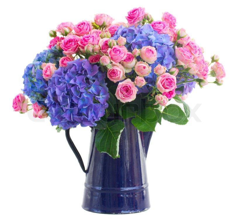 strau frischer rosen und hortensien blau blumen stock foto colourbox. Black Bedroom Furniture Sets. Home Design Ideas