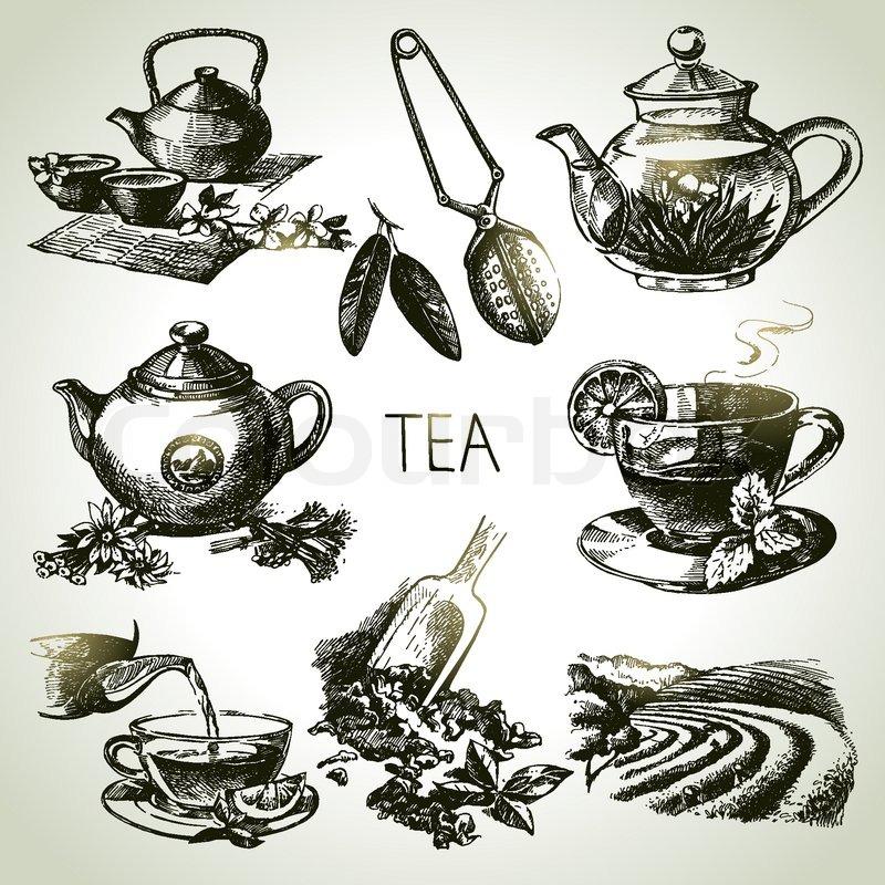 hand drawn sketch vector tea set stock vector colourbox hand drawn sketch vector tea set