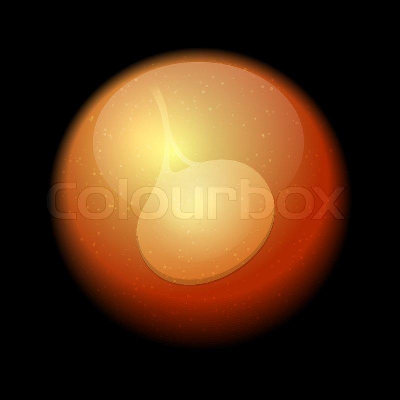 Menschlichen Fötus in der Gebärmutter. Vektor   Vektorgrafik   Colourbox