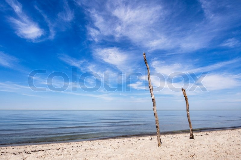 Stock image of 'On shore of the Baltic Sea.'