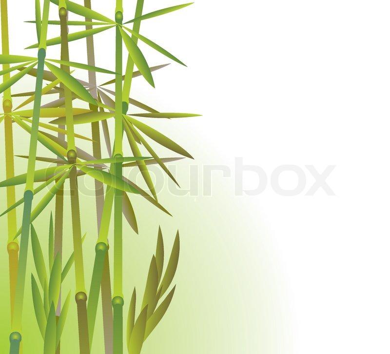 Bambus Vector Illustration Vektorgrafik Colourbox