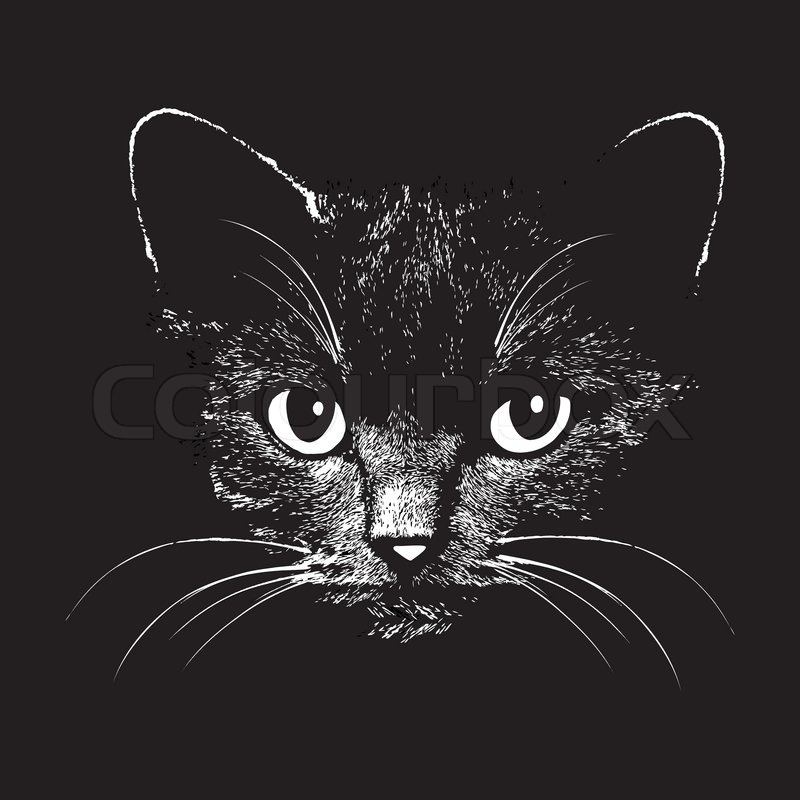 Cat Head Vector Animal Ilration For T Shirt Sketch Tattoo Design