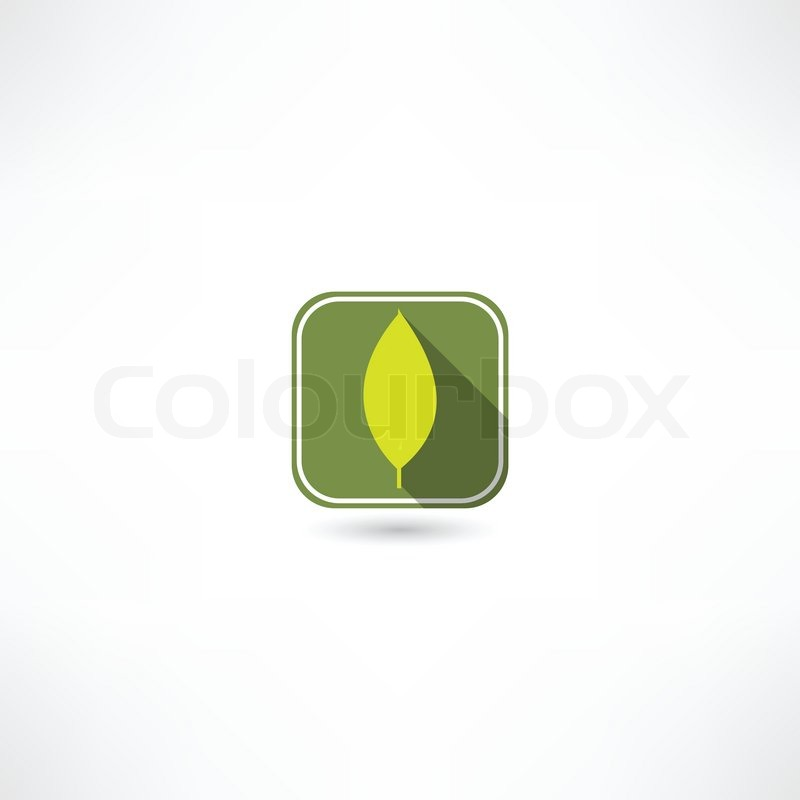 Leaf Icon Leaf Icon Vector