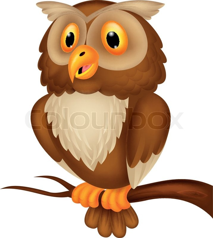 Vector illustration of cute owl cartoon stock vector for Owl beak drawing