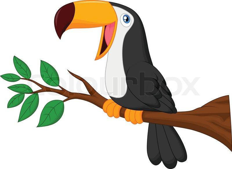 """""""hübsch Tukan Vogel Cartoon"""""""