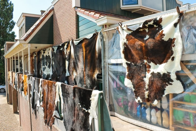 Tanned hides on the balcony of the leather shop in Volendam. Netherlands , stock photo