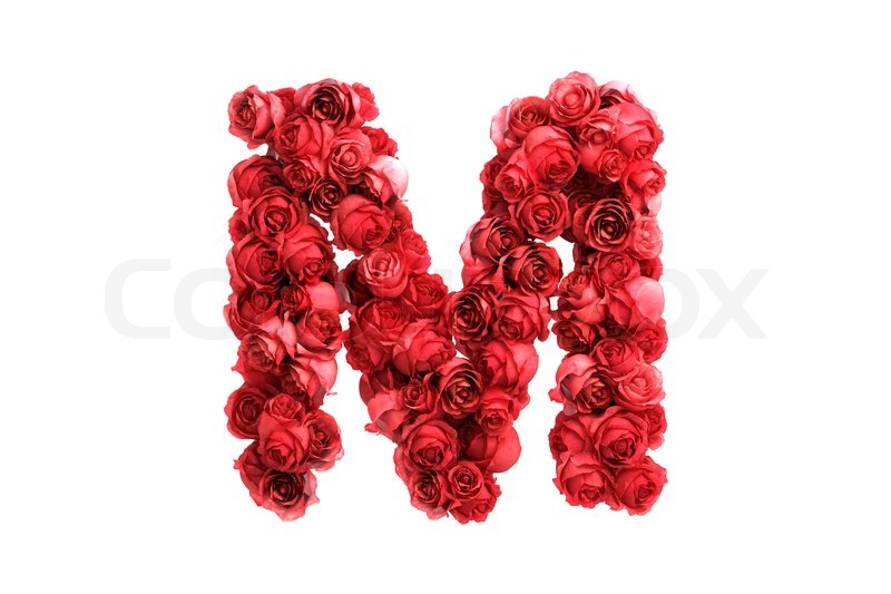 Red roses letter M, isolated on white ... | Stock Photo | Colourbox