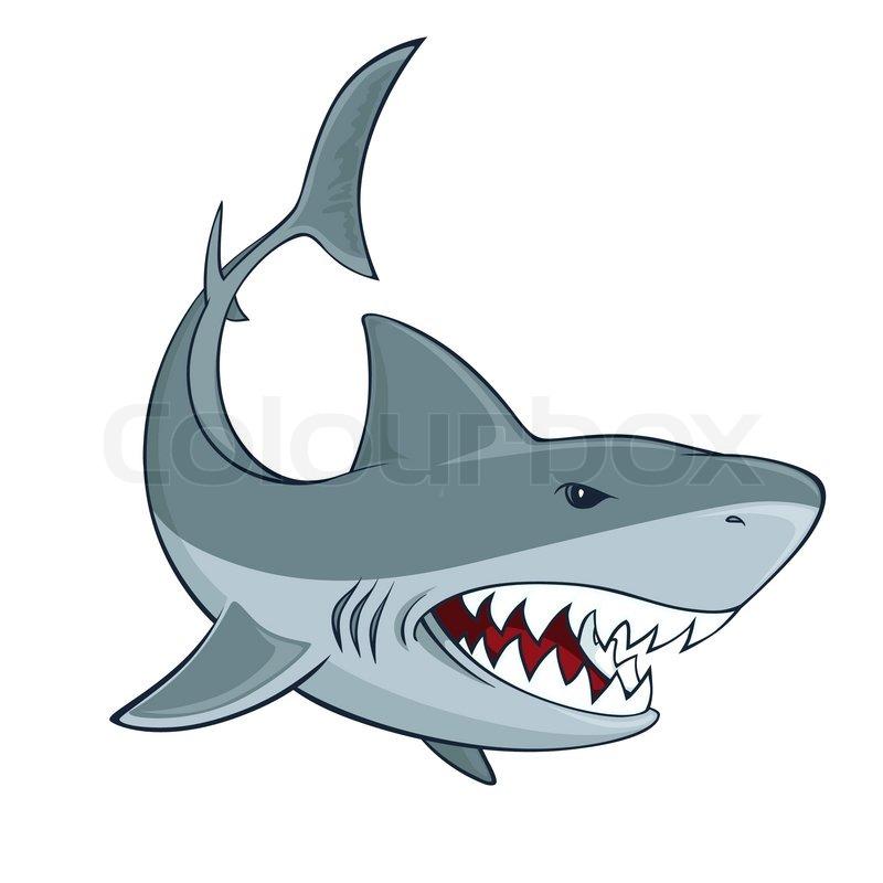 Gemütlich Weiße Hai Anatomie Zeitgenössisch - Menschliche Anatomie ...