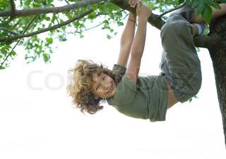 Billede af 'krøllet, drenge, træer'