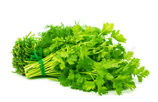 Bunch of ripe parsley