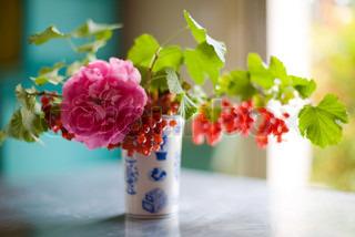 Billede af 'Plant, Blomst, bouquet'