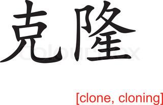 20Pcs Klon Klonen Kragen Schaum Einsatz Hydroponisch Root Schutz Netz Neu