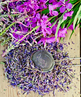 Herbal tea with strainer of fireweed on board