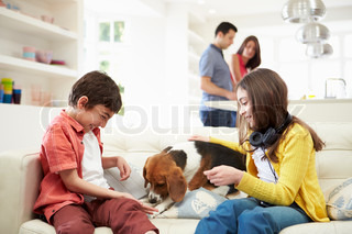 Children Playing With Dog On Sofa As Parents Make Meal