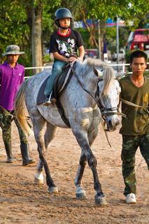 ponny ride