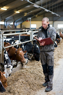 A farmer making notes about his livestock