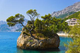 Island and trees in Brela, Croatia