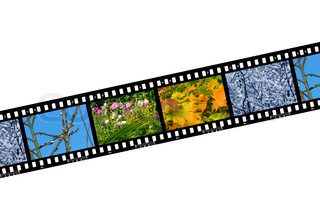 Nature seasons in film frames