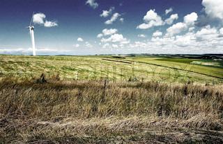 Billede af 'miljø, Miljø, omgivelser'