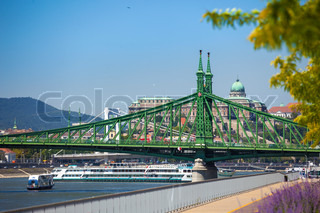 View of Liberty Bridge over Danube and  Buda Castle, Budapest