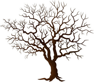 vector illustration of old tree on white background