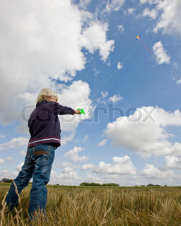 A young boy flying a kite in a field