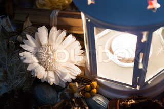 Dried flowers with lamp