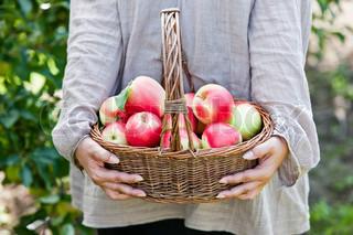 Billede af 'kurve, æbler, efteråret'