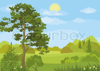 Summer landscape with trees and sky