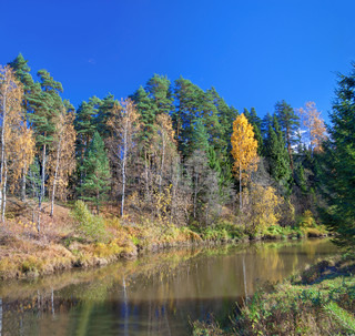autumn landscape with the river, the forest and the blue sky