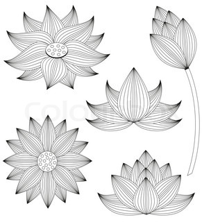 Lotus flower and leaf isolated on white stock vector colourbox lotus flower vector set on white background mightylinksfo