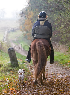 A woman riding a horse and a pet dog walking with them