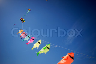 Kites in a line