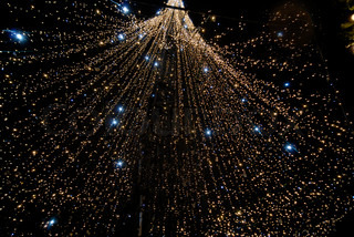 Christmas Tree and light decorations in the night