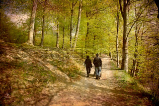 Artistic work of my own in retro style - Postcard from Denmark. - Family walk in the Beech forest.